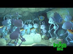 мультфильмы, bugs, life