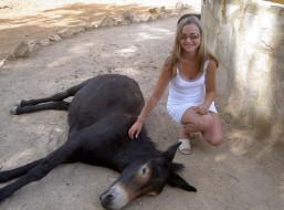 ispanija, safari, животные, ослы