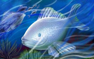 рисованные, животные, рыбы