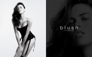 Blush обои для рабочего стола 1680x1050 blush, бренды