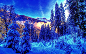 Winter ���� ��� �������� ����� 1920x1200 winter, �������, ����, ����, �������, ���, ����, ����, �����, ����, ��������