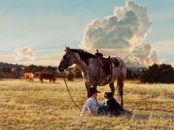 Скачать обои домашние животные, лошадь, ожидание, Tim Cox 800x600.