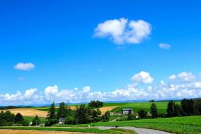 природа, поля, дома, небо