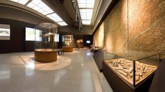 интерьер, дворцы, музеи, музей