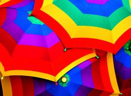 разное, сумки, кошельки, зонты, яркий, разноцветный