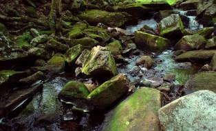 природа, реки, озера, река, камни