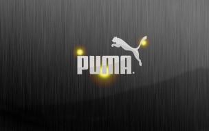 бренды, puma, линии, логотип, хищник