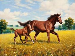 Arthur Saron Sarnoff обои для рабочего стола 3000x2258 arthur, saron, sarnoff, рисованные, луг, жеребёнок, лошадь