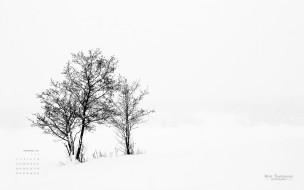 календари, природа, снег, деревья