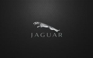 бренды, авто, мото, jaguar, сетка, логотип