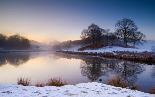 природа, реки, озера, река, берег, деревья, зима, снег, утро