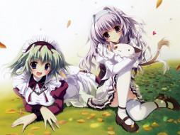 аниме, mashiro, iro, symphony, девушки