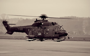 as332, super, puma, авиация, вертолёты, вертолет