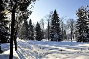 обои для рабочего стола 2400x1600 природа, зима, петергоф
