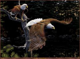 Al Agnew - Evening Retreat обои для рабочего стола 2151x1584 al, agnew, evening, retreat, рисованные, дерево, лес, птицы, орлы