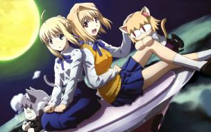 аниме, tsukihime, fate