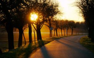 обои для рабочего стола 1920x1200 природа, дороги, дорога, солнце, деревья, закат, поворот