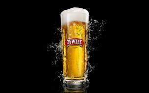 zywiec, бренды, пиво