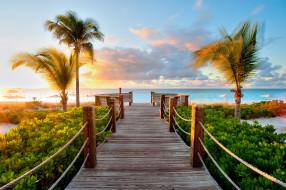 закат море картинки пальмы