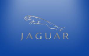 бренды, авто, мото, jaguar, логотип