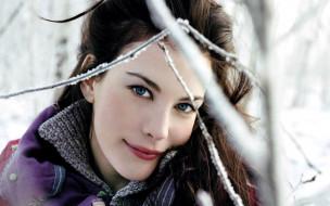 Liv Tyler, девушки, звезда, актриса, голливуд