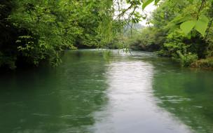 природа, реки, озера, деревья, река