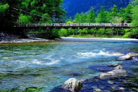 природа, реки, озера, река, мост