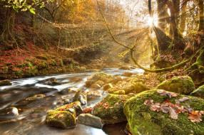 Реки озера осень свет солнце камни