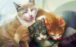 рисованные, животные, коты, кошки