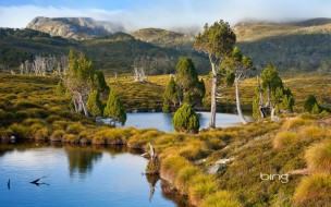 обои для рабочего стола 1920x1200 природа, реки, озера, вершины, деревья