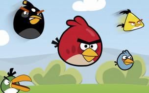 angry, birds, видео, игры, кусты, птицы