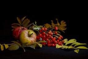 обои для рабочего стола 4590x3060 еда, фрукты, ягоды, натюрморт