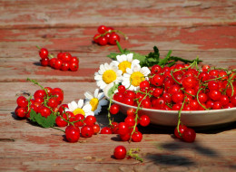 еда, смородина, дары, лета, ягоды
