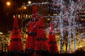 праздничные, новогодние, пейзажи, елки