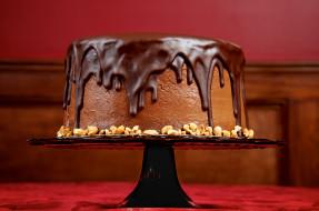еда, пирожные, кексы, печенье, торт, шоколад