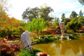 Botanical Garden San Marino California обои для рабочего стола 2436x1624 botanical, garden, san, marino, california, природа, парк, растения, водоем, деревья, цветы
