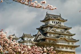 himeji, castle, города, замки, Японии, Япония, замок, цветущая, сакура