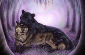 рисованные, животные, волк, пантера, черная, хищники, дружба
