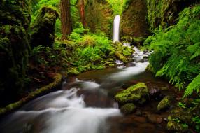 ущелье реки Columbia   Oregon обои для рабочего стола 2048x1365 ущелье, реки, columbia, oregon, природа, озера, лес, река, водопад