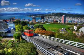 wellington, новая, зеландия, города, веллингтон, дома, панорама
