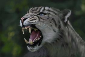 рисованные, животные, пасть, голова, ирбис, кошка, дикая, хищник, леопард