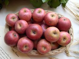еда, Яблоки, ваза, яблоки