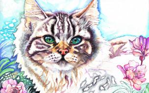 рисованные, животные, глазки, цветы, киса