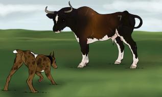 рисованные, животные, корова, собака