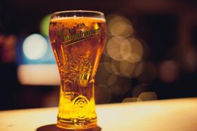 бренды, staropramen, бренд, пена, пиво, бокал
