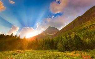 природа, восходы, закаты, восход, рассвет, ели, горы