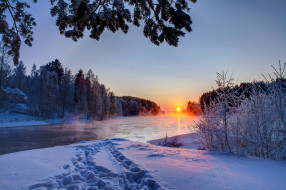 природа, зима, пар, следы