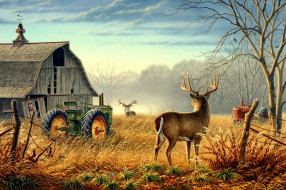 рисованные, животные, осень, олень, трактор