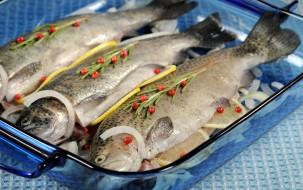 еда, рыба,  морепродукты,  суши,  роллы, маринад