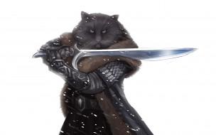 Котэ Воин обои для рабочего стола 2880x1800 котэ воин, фэнтези, существа, оружие, воин, кот, волосатый, меч